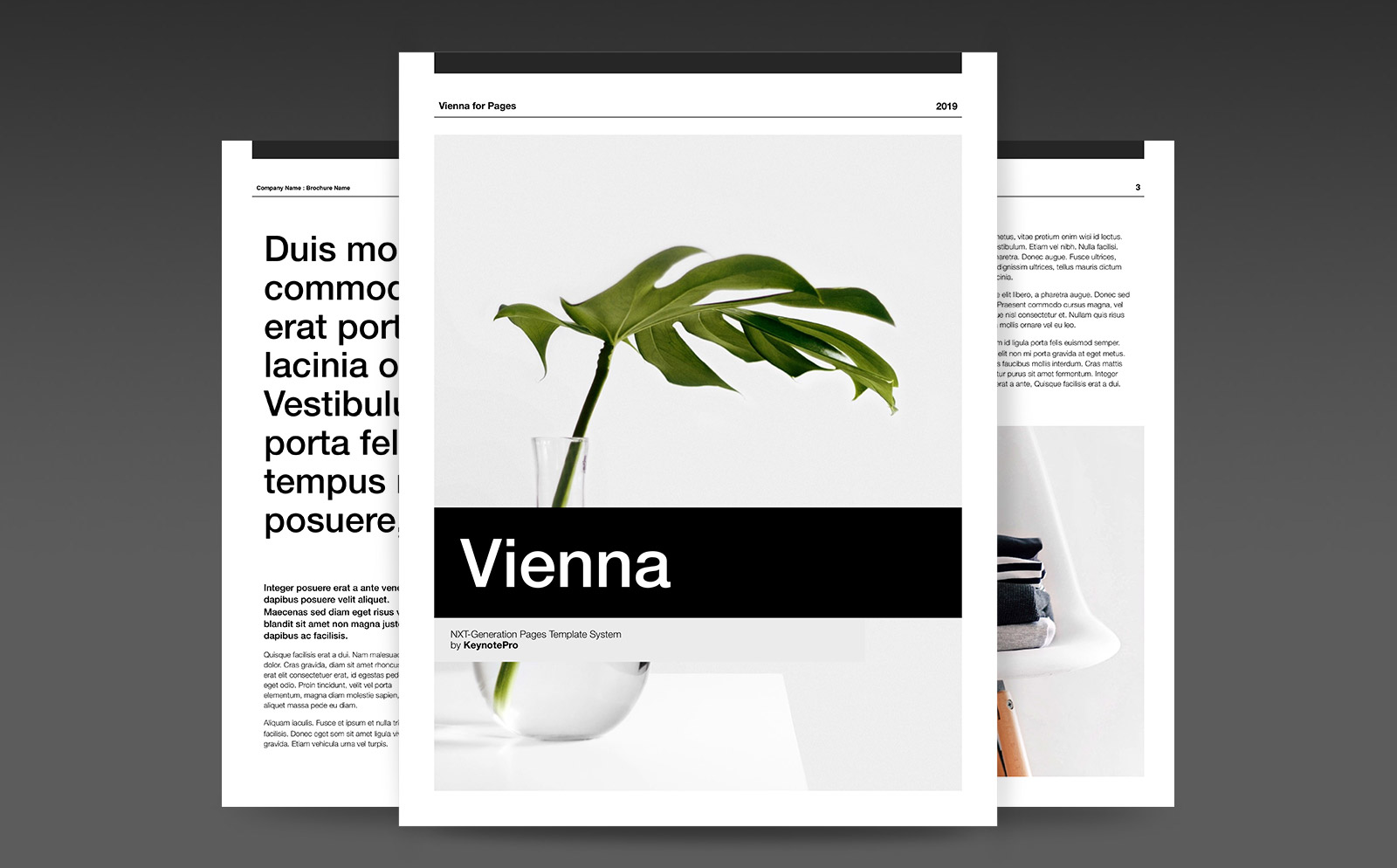 Vienna (NXT) Template System for Pages